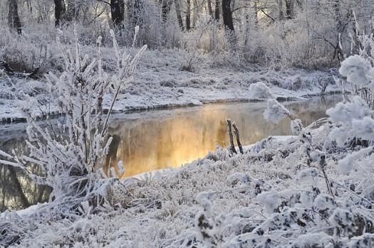 Beautiful winter scenary